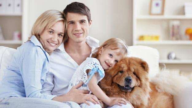 Wills & Trusts dog-young-family Direct Wills Bexleyheath